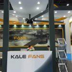 kale_fans_big5_8